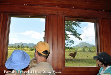 Tour the Kilohana Plantation in a historic passenger car.