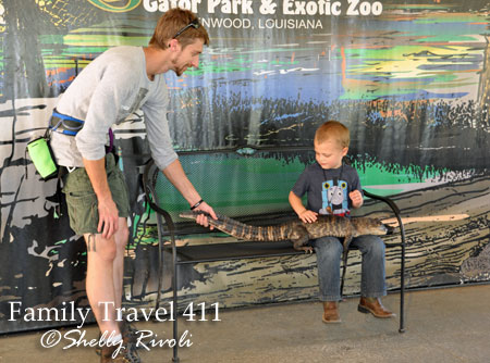 A 4-year-old boy holds a 4-year-old alligator at Gators & Friends. Note: The fancy belt on the employee to the left is actually a zip line harness...