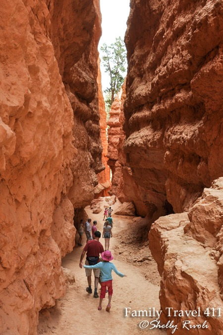 More layers of switch-backs weave in and out of increasingly precious shade as we descend farther into Bryce Canyon.