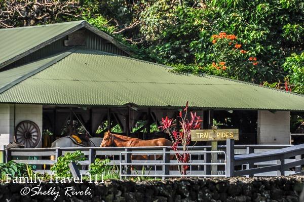Travaasa Hana stables