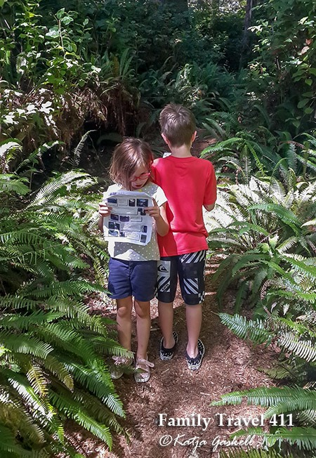 Tofino has great trails to hike with young explorers.