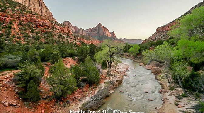 The 411 on Zion National Park with Kids