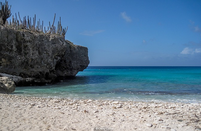Bonaire with kids vacation ideas