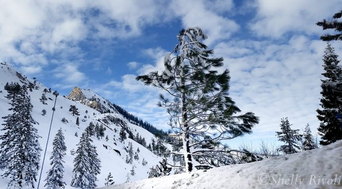 South Tahoe Snow Story – In Photos