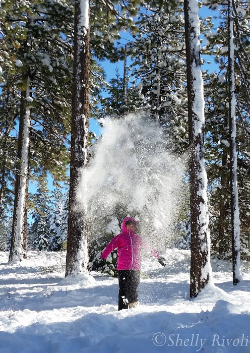 child throwing snow into air with backlighting through the powder