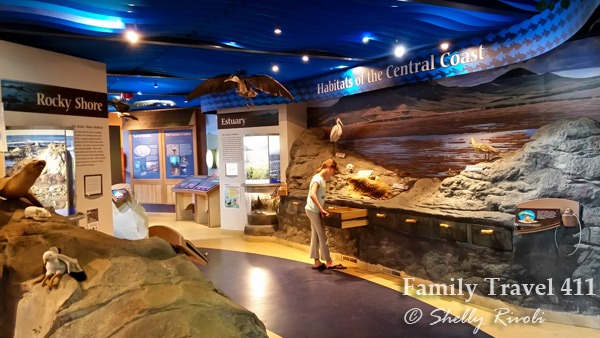 Exploring the Morro Bay Natural History Museum