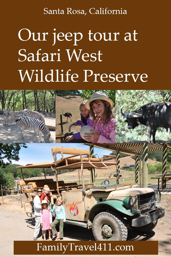 The jeep tour at Safari West Wildlife Preserve in Santa Rosa, California