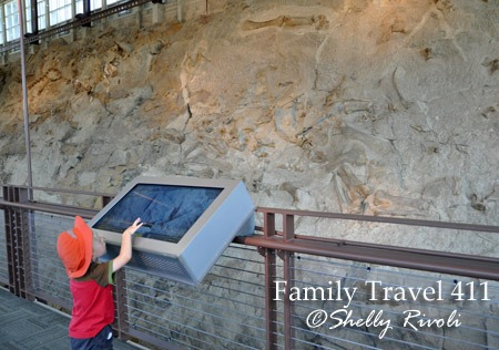"Using the interactive ""fossil finder"" to help identify fossils at Dinosaur National Monument."