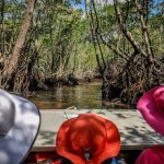 Great travel hats for kids taking on the Florida Everglades