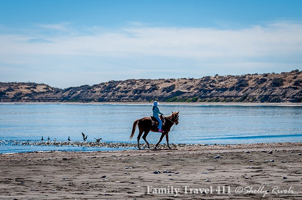 horseback ride by the Sea of Cortez with Rancho El Cajon, on family vacation in La Paz, Mexico