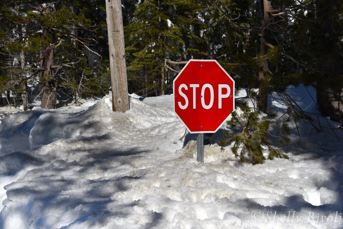 stop sign buried in snow near Tahoe