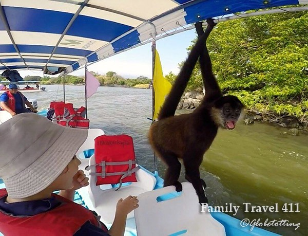 Pirate aboard! Or rather a curious monkey invading from La Isla de los Monos.