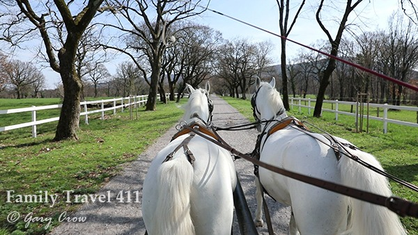 carriage ride in the Karst.