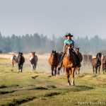 girl riding horse in Bend, Oregon with kids