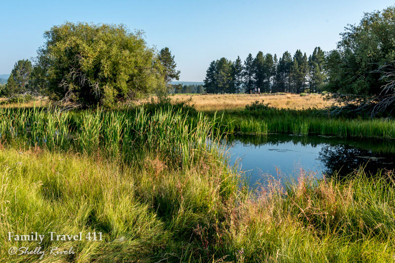 View from a bike path at Sunriver Resort, joggers in the distance.