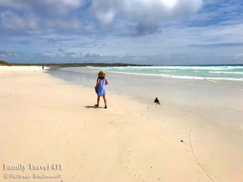 Girl walking on white sand beach of Tortuga Bay beside a marine iguana in the Galapagos.