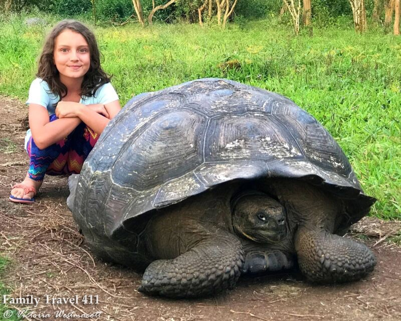child with giant tortoise in Galapos, island of santa cruz
