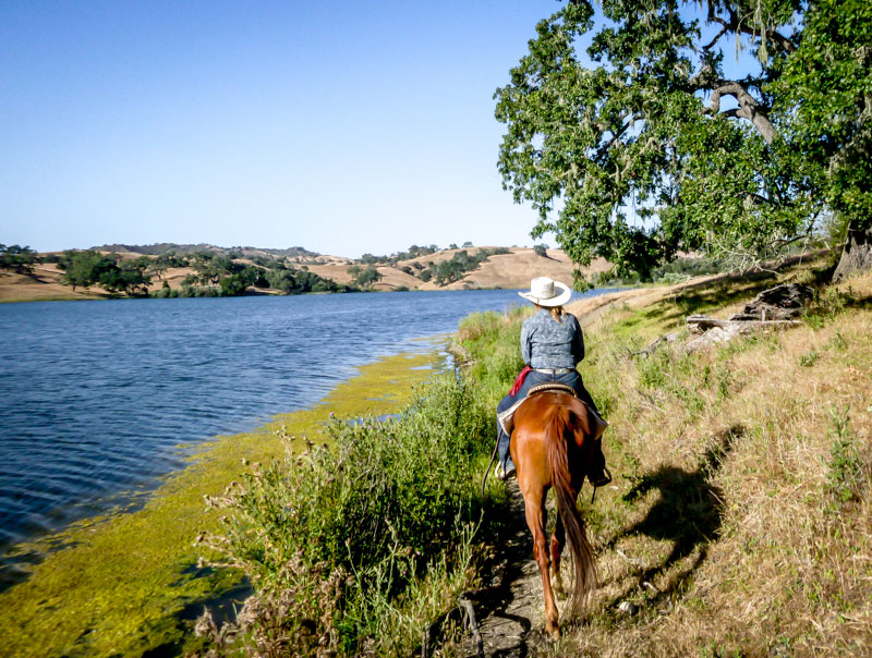 horseback riding at the alisal guest ranch in Solvang, California